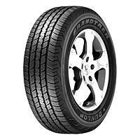 Dunlop AT 20 Grand Trek Tyre Image